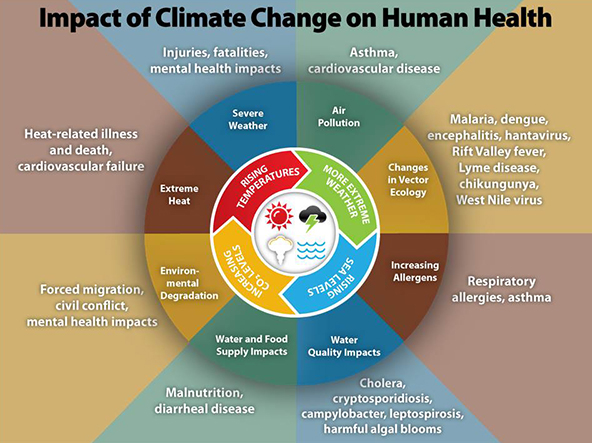 Infographic depicting health effects of climate change